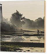 Mist On The Morning Tide Wood Print by Trevor Wintle