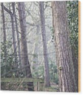 Mist Through The Trees Wood Print