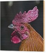 Mister Rooster Wood Print