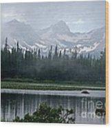 Misty Beauty Wood Print