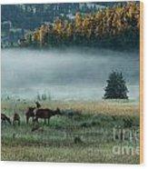 Misty Breakfast Wood Print