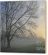 Misty Dawn Wood Print