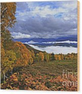 Misty Day In The Cairngorms II Wood Print
