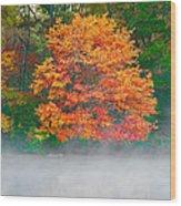 Misty Fall Tree Wood Print