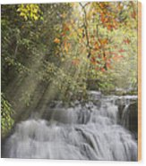 Misty Falls At Coker Creek Wood Print