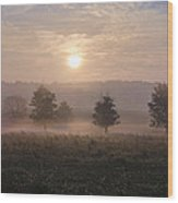 Misty Farm At Sunrise Wood Print