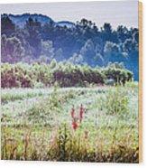 Misty Field In Blue Ridge Mountain Farmlands Wood Print
