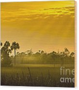 Misty Glade Wood Print
