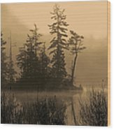 Misty Lake And Trees Silhouette Wood Print