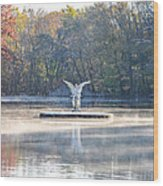 Misty Lake Angel Wood Print