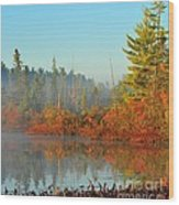Misty Marsh Wood Print