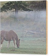 Misty Meadow Wood Print