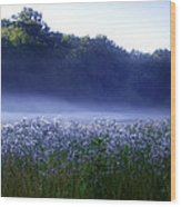 Misty Morning At Vally Forge Wood Print