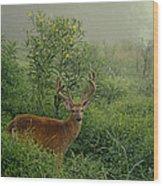 Misty Morning Deer Wood Print
