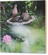 Misty Morning Doves Wood Print