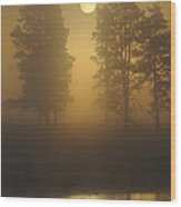Misty Morning I Wood Print