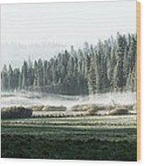 Misty Morning In Yosemite Wood Print