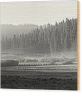 Misty Morning In Yosemite Sepia Wood Print