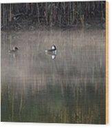 Misty Morning Mergansers Wood Print
