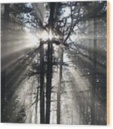 Misty Morning Sunrise Wood Print