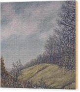 Misty Mountain Valley Wood Print