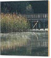 Misty Pond Wood Print