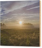 Misty Sunrise At Valley Forge Wood Print