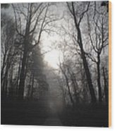 Misty Trail Wood Print by Stephanie  Varner