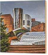 Mit Stata Building Center - Cambridge Wood Print