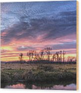 Mitchell Park Sunset Panorama Wood Print