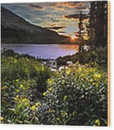 Mitchell Sunrise Wood Print
