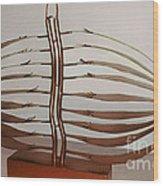 Mitotic Spindle Wood Print