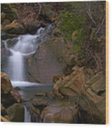 Mix Canyon Creek Wood Print by Bill Gallagher