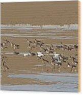 Mixed Flock Wood Print