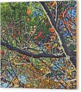 Mixed Season Wood Print