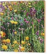Mixed Wildflowers Wood Print