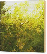 Painted Garden  Wood Print