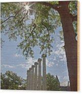 Mizzou Columns Sunflare Wood Print