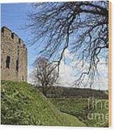 Moated Castle Wood Print