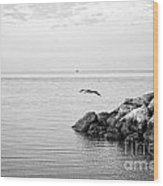 Mobile Bay 10 Wood Print