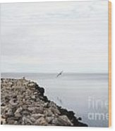 Mobile Bay 7 Wood Print