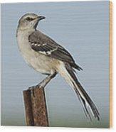Mocking Bird On A Metal Post Wood Print