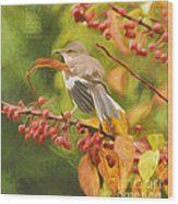 Mockingbird And Berries Wood Print