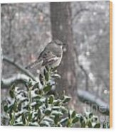Mockingbird Cold Wood Print