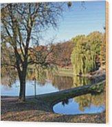 Moczydlo Park In Warsaw Wood Print
