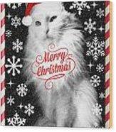 Mod Cards - I'm A Star Baby I'm A Christmas Star - Merry Christmas Wood Print