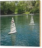 Model Boats On Conservatory Water Central Park Wood Print