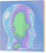 Model Of A Human Head In Profile Wood Print