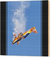 Model Plane 10 Wood Print