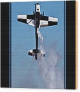 Model Plane 11 Wood Print